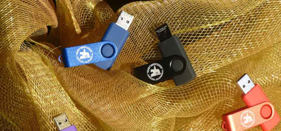 USB Picture Sticks